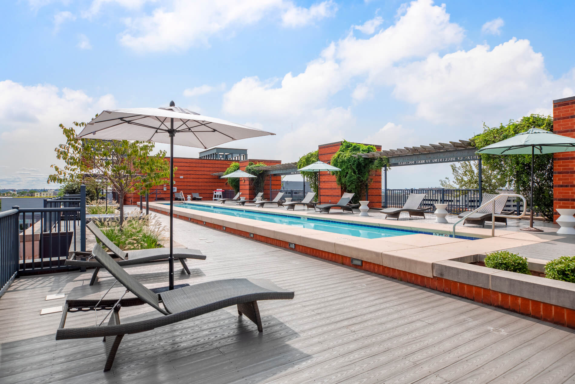 Rooftop pool with ample seating, umbrellas and growing vines