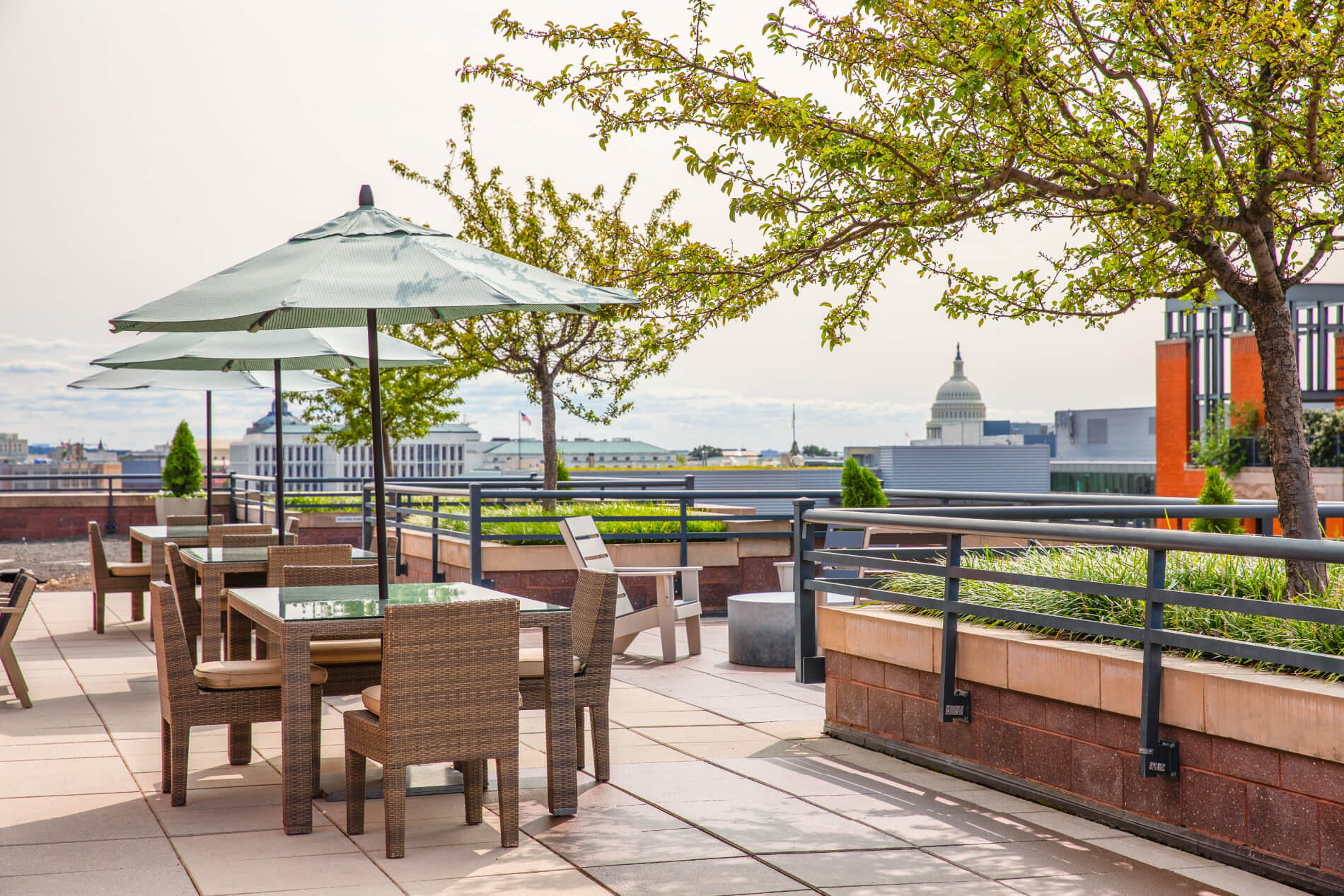 Rooftop tables and umbrellas with view of Capitol dome in background
